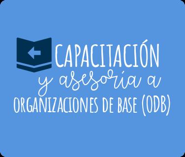 Capacitación y asesoría a organizaciones de base