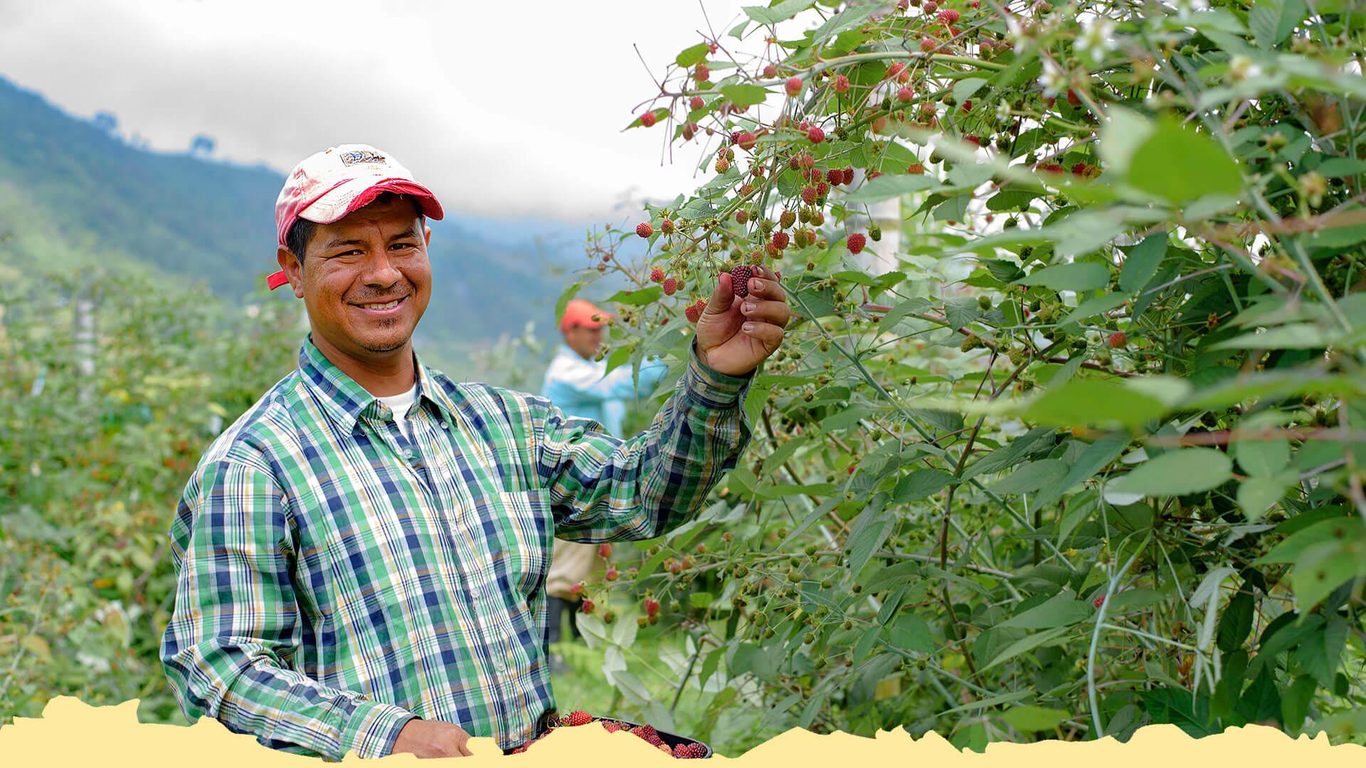Generación de ingresos y desarrollo base - Fundación Smurfit Kappa Colombia